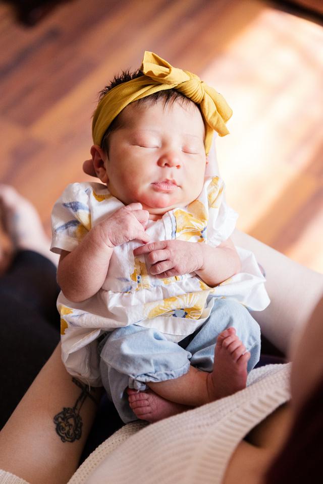 Henry Newborn - Brittany Lynn Imagery LLC - St Charles MO Photographer -43