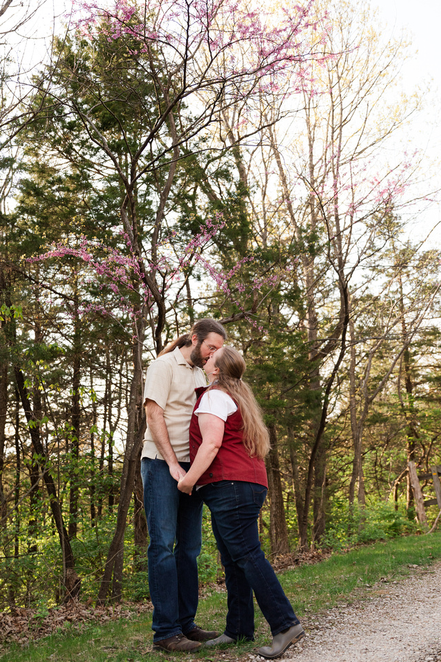 Heather and Dan Witcher - Brittany Lynn Imagery LLC - St Charles MO Photographer -79