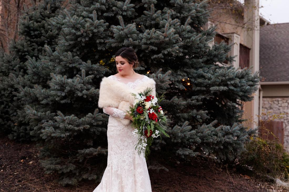Perez 2 - Brittany Lynn Imagery LLC - St Charles MO Photographer -6