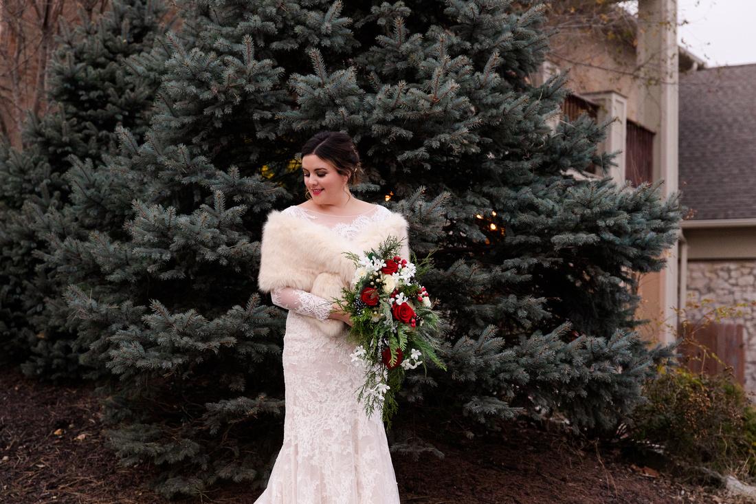 Perez 2 - Brittany Lynn Imagery LLC - St Charles MO Photographer -7