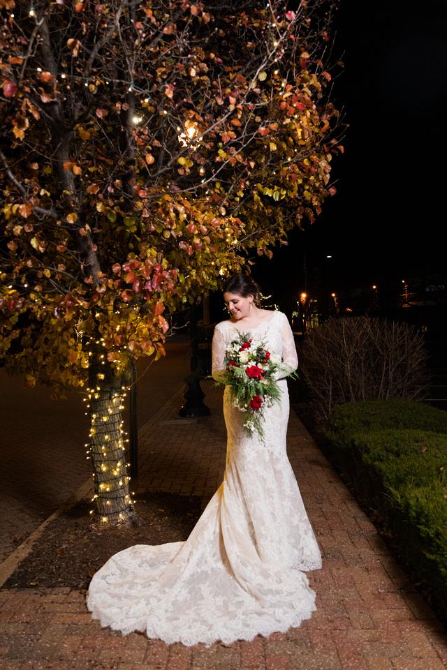 Perez 2 - Brittany Lynn Imagery LLC - St Charles MO Photographer -15