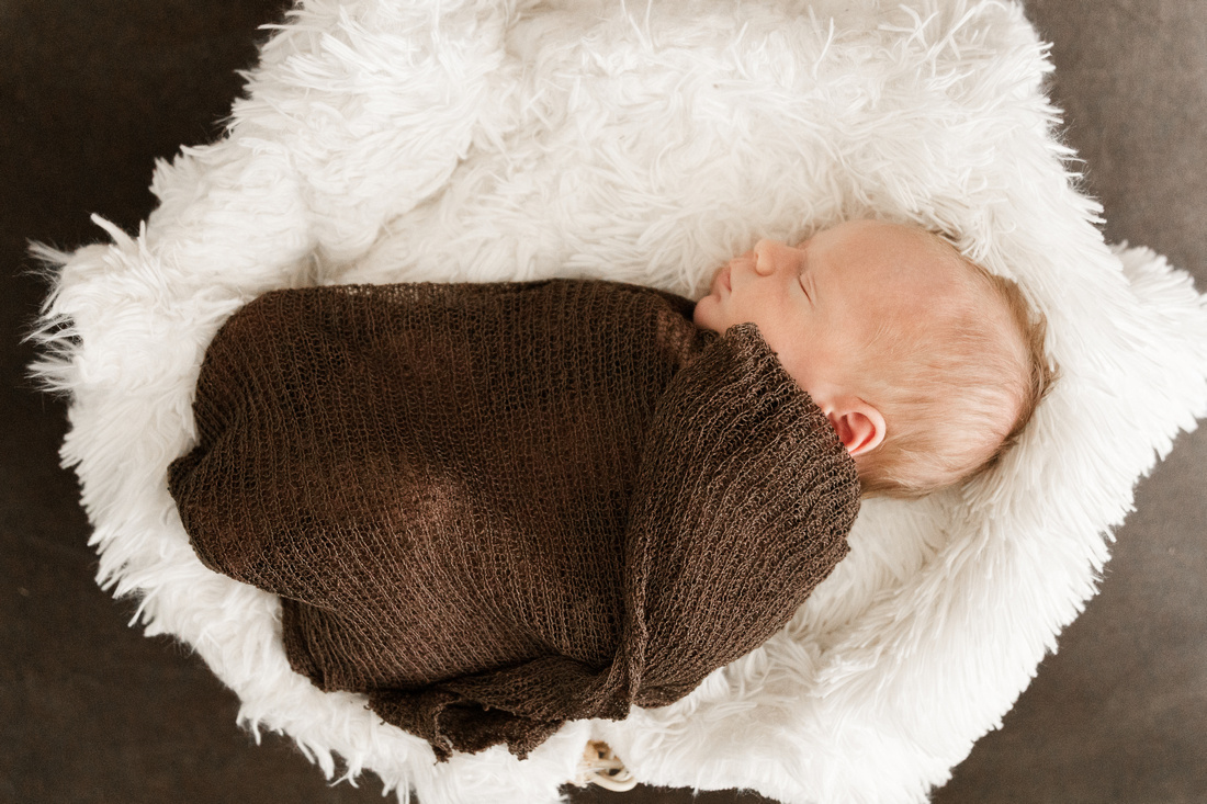 Finley Roy - Lifestyle In-Home Newborn Session - Brittany Lynn Imagery LLC - St Charles MO Photographer -5