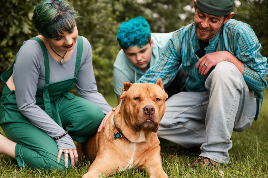 Hicks Family - Broemmelsiek Park - Brittany Lynn Imagery LLC - St Charles MO Photographer -5