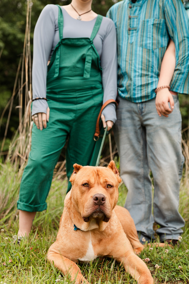 Hicks Family - Broemmelsiek Park - Brittany Lynn Imagery LLC - St Charles MO Photographer -23