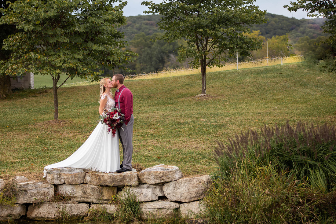 Brittany Lynn Imagery LLC St Charles MO Wedding Photogtrapher Marthasville-9221