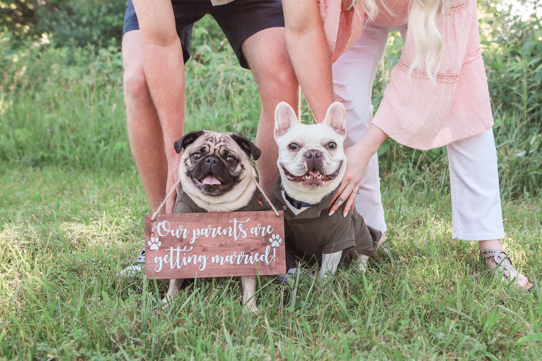 Brittany Lynn Imagery LLC St. Charles MO Photographer Wedding Engagement STL St Louis -1207