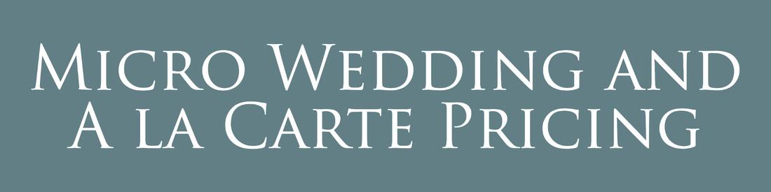stl micro wedding st charles elopement photographer