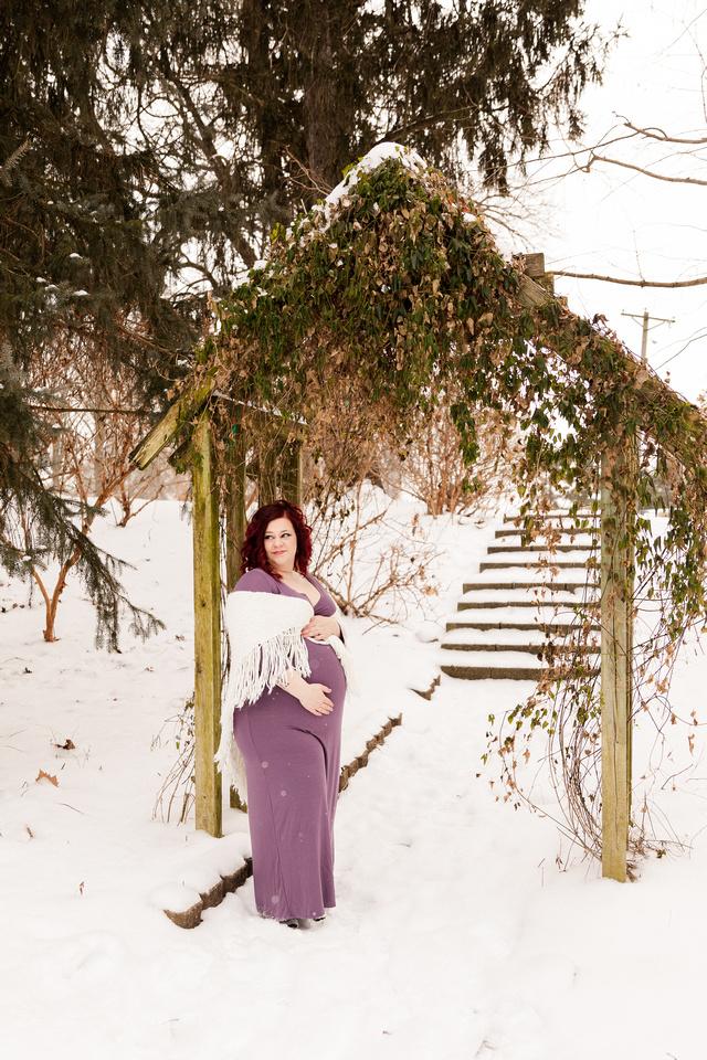 Henry - Blanchette Park Rau Garden - Winter Maternity - Brittany Lynn Imagery LLC - St Charles MO Photographer -8