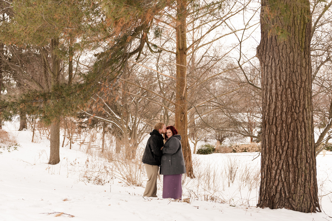 Henry - Blanchette Park Rau Garden - Winter Maternity - Brittany Lynn Imagery LLC - St Charles MO Photographer -19