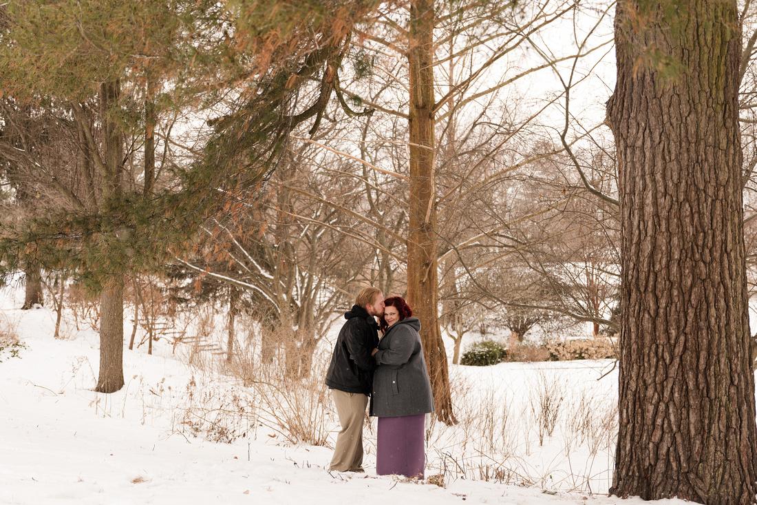 Henry - Blanchette Park Rau Garden - Winter Maternity - Brittany Lynn Imagery LLC - St Charles MO Photographer -21