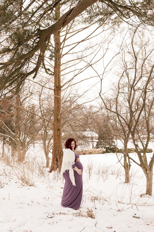 Henry - Blanchette Park Rau Garden - Winter Maternity - Brittany Lynn Imagery LLC - St Charles MO Photographer -22