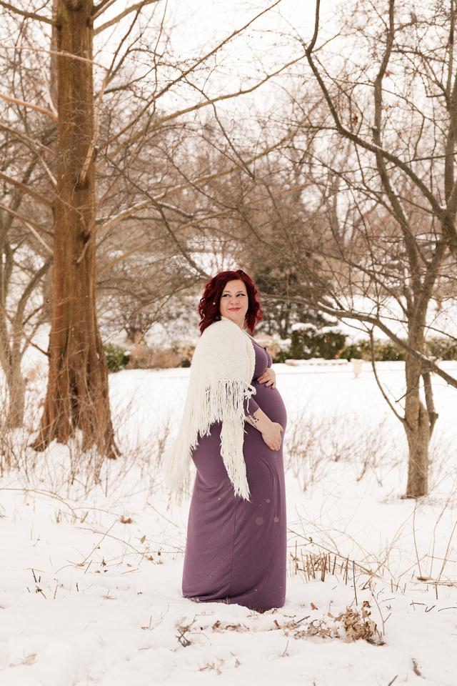 Henry - Blanchette Park Rau Garden - Winter Maternity - Brittany Lynn Imagery LLC - St Charles MO Photographer -25