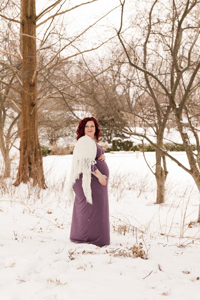 Henry - Blanchette Park Rau Garden - Winter Maternity - Brittany Lynn Imagery LLC - St Charles MO Photographer -26